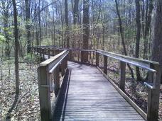 Bridge.fw.preserve5.2014