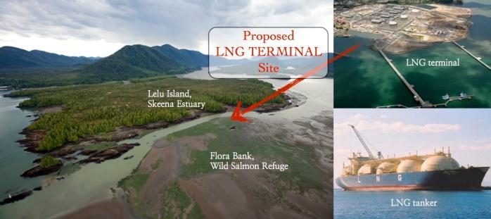 Lelu Island proposal graphic